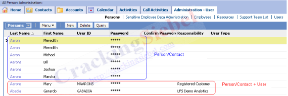 What is Person or Contact - Application View